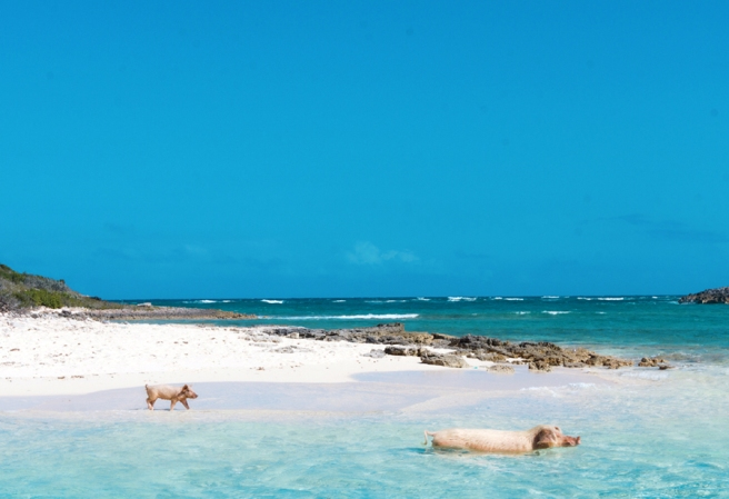 blog-bahamas (2)